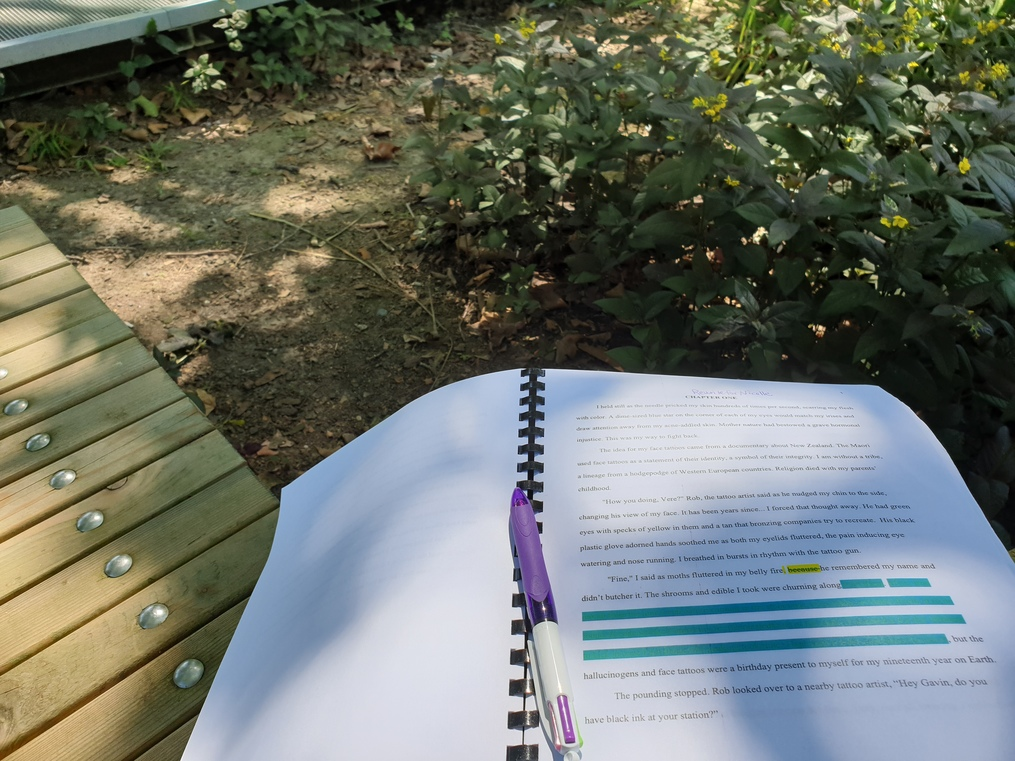 Manuscript-at-the-park-picture-tips-for-organizing-and-implementing-feedback-for-revisions-and-editing-susan-shiney-critique-partners-beta-readers
