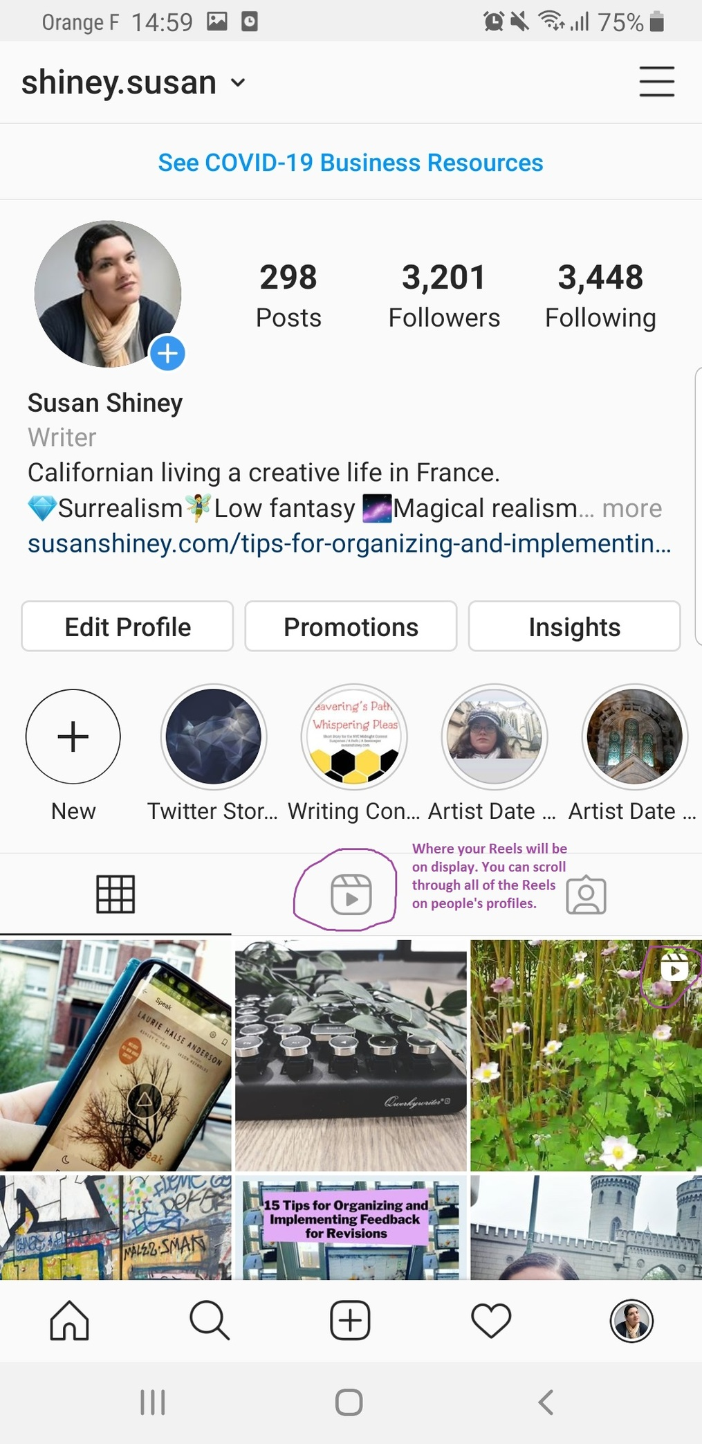 Overview-of-Instagram-Reels-Susan-Shiney-Profile-Pic-Showing-where-to-click-for-Instagram-Reels-on-your-profile