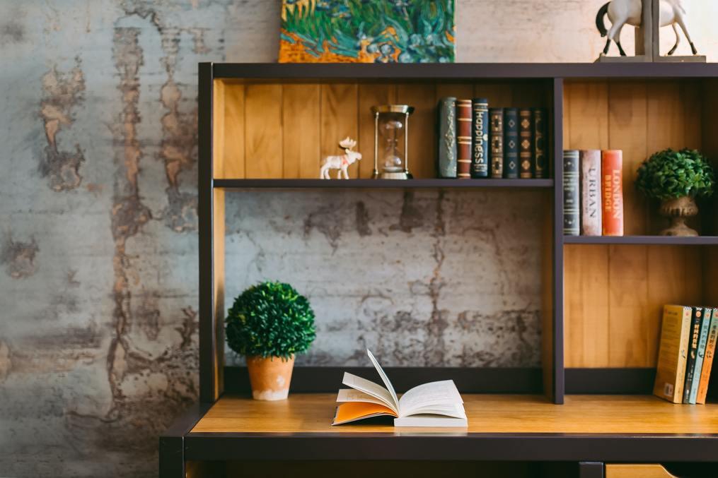 plants-on-bookshelves-styling-bookshelves-Creative-Bookshelf-Decorating-Ideas-susan-shiney-